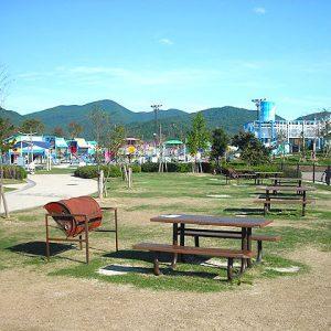 福富_道の駅デイキャンプ