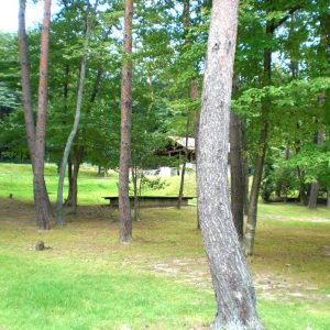 福富_県央の森公園