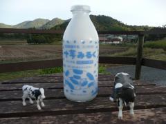 トムミルク牛乳
