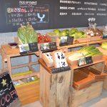 【新鮮野菜たっぷり!】とよさかマルシェに行ってきました【生産者とお話♪】