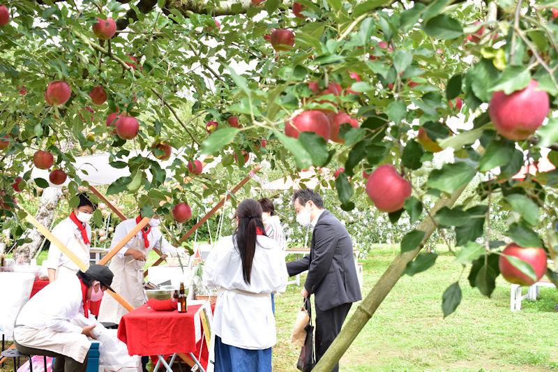 7.リンゴ越しのLavande