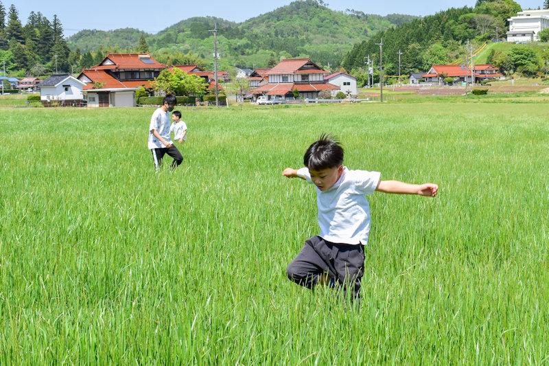 牧草地でジャンプ